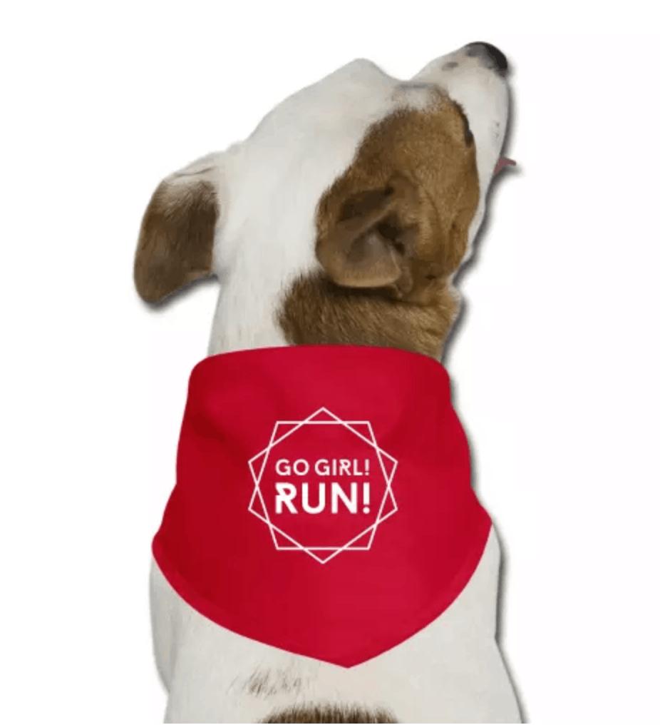 Hilfreiche Tipps fürs Laufen mit Hund –So klappt's problemlos