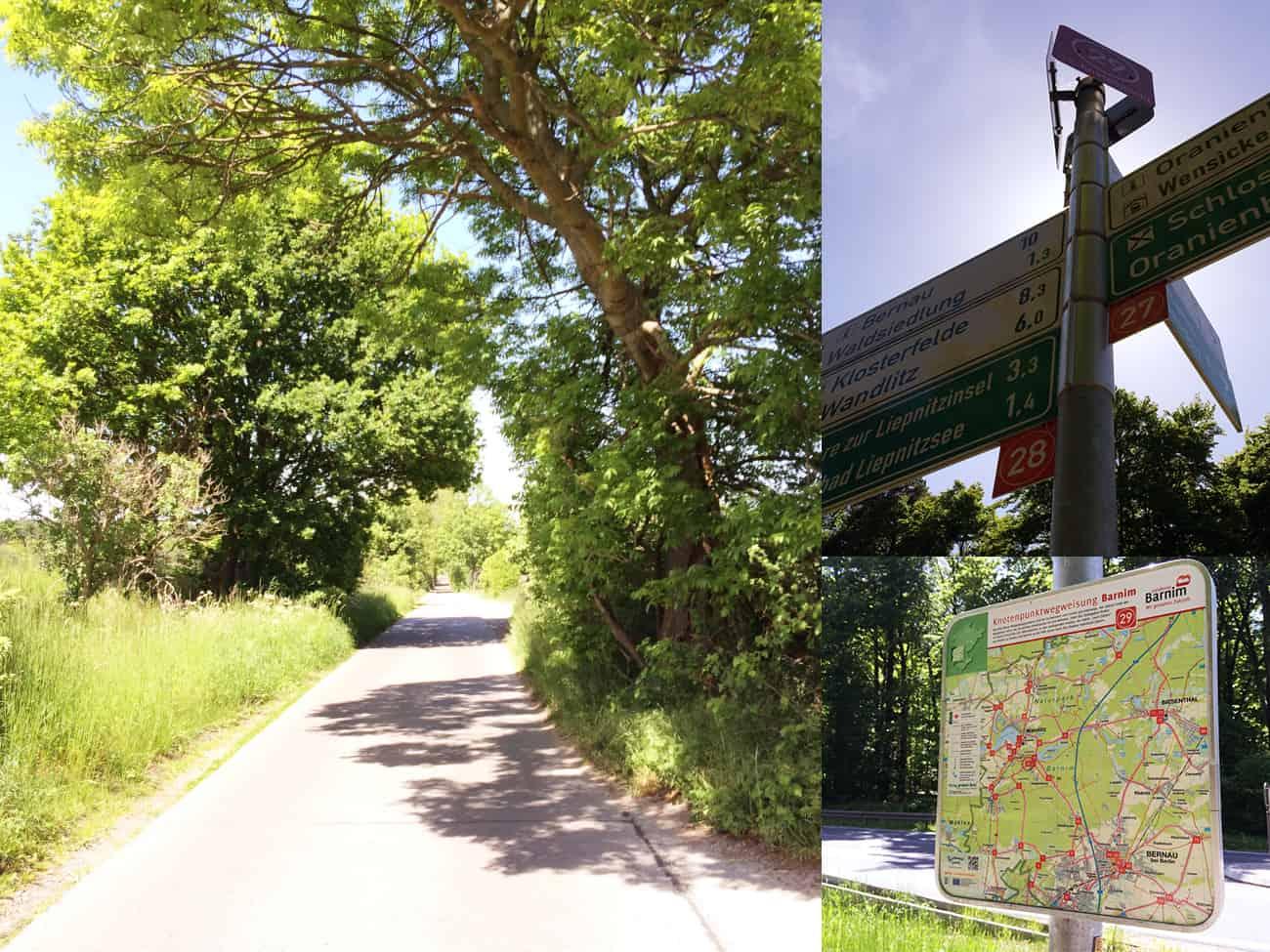 gogirlrun_brandenburg_fahrradfahren_briesetal_liepnitzsee15