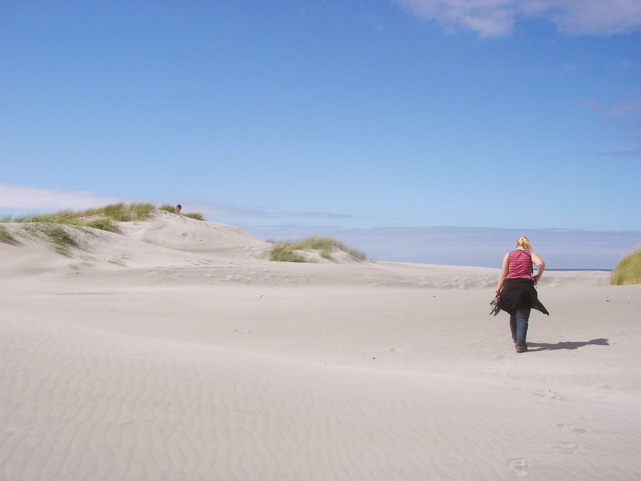 Neuseeland Roadtrip Nordstrand Farewell Spit