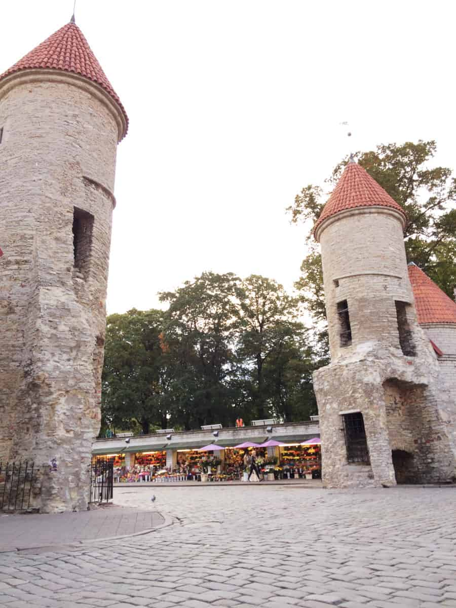 gogirlrun_laufen_in_Tallinn_22