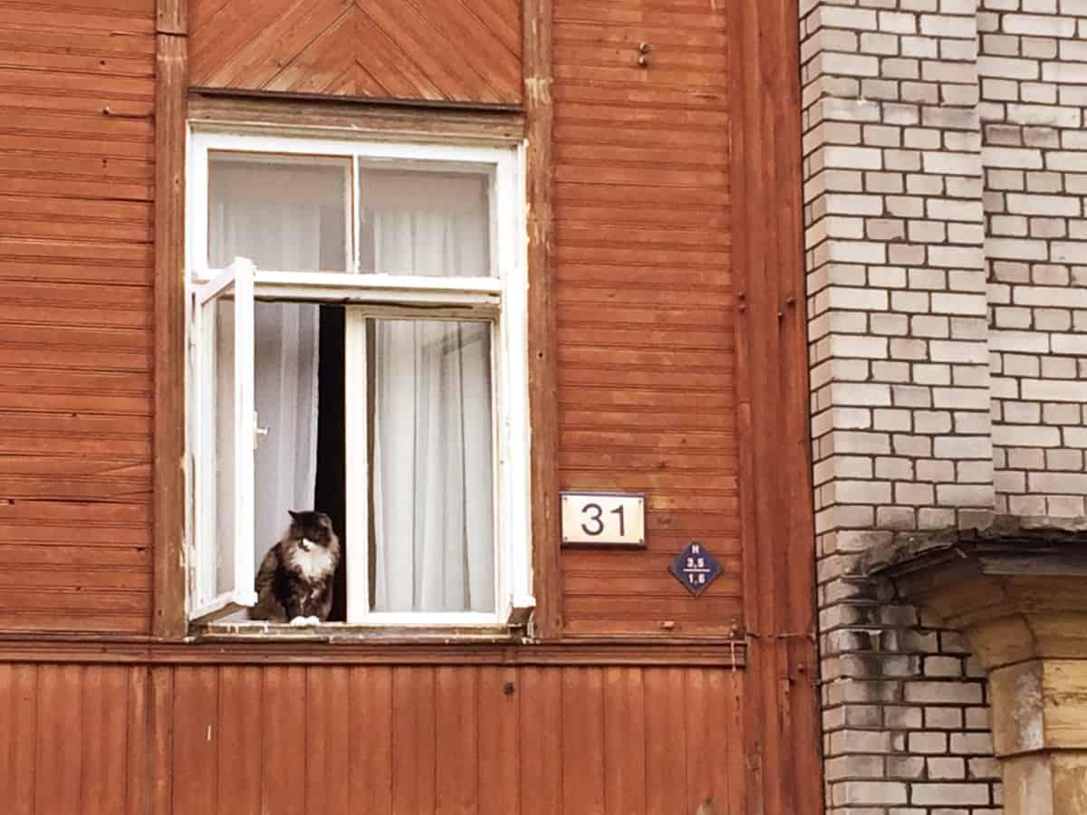 Tallinn Insidertipps Kalamaja
