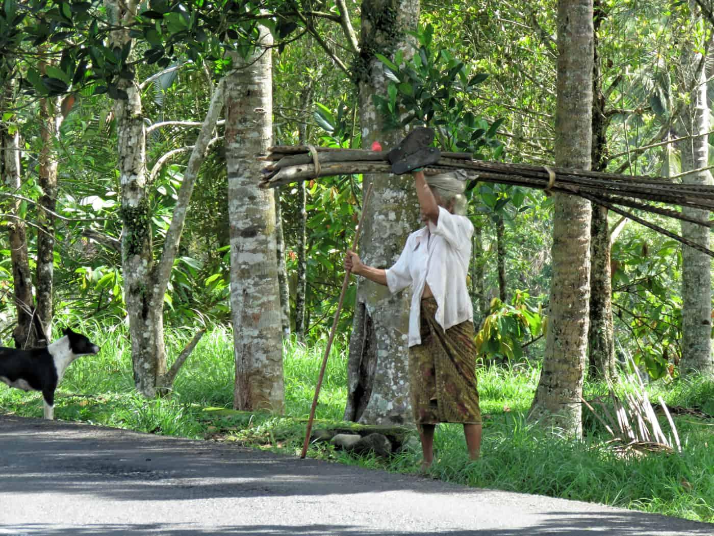 gogirlrun_bali_indonesien_privatetour_norden_reisterassen_tabanan_34