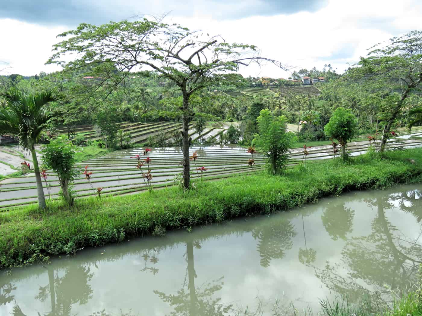 gogirlrun_bali_indonesien_privatetour_norden_reisterassen_tabanan_38