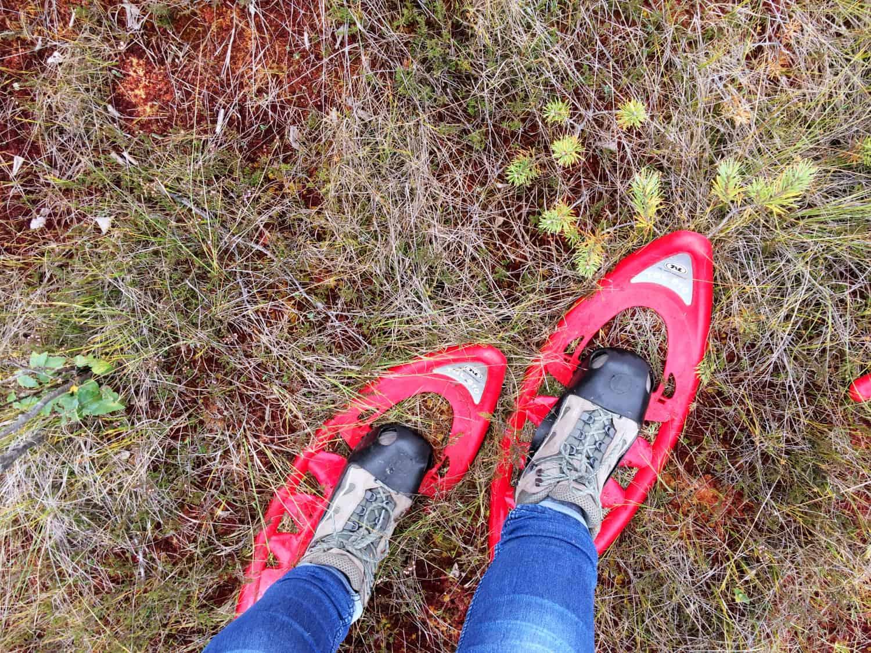 gogirlrun_estland_outdoor_moorschuhwanderung_soomaa-nationalpark_22
