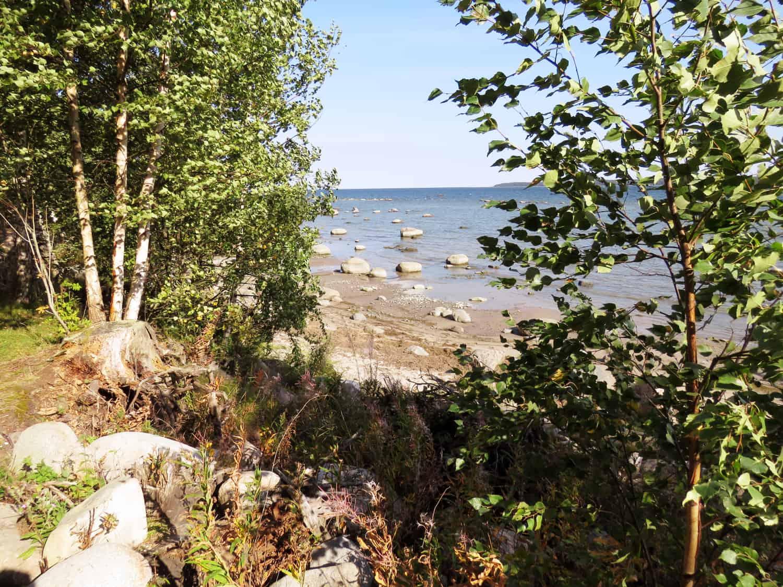 gogirlrun_estland_outdoor_wandern_lahemma-nationalpark_1