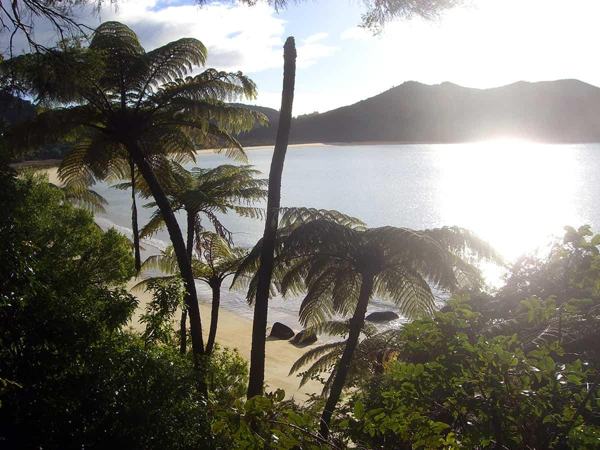 Wandern in Neuseeland im Abel Tasman Nationalpark