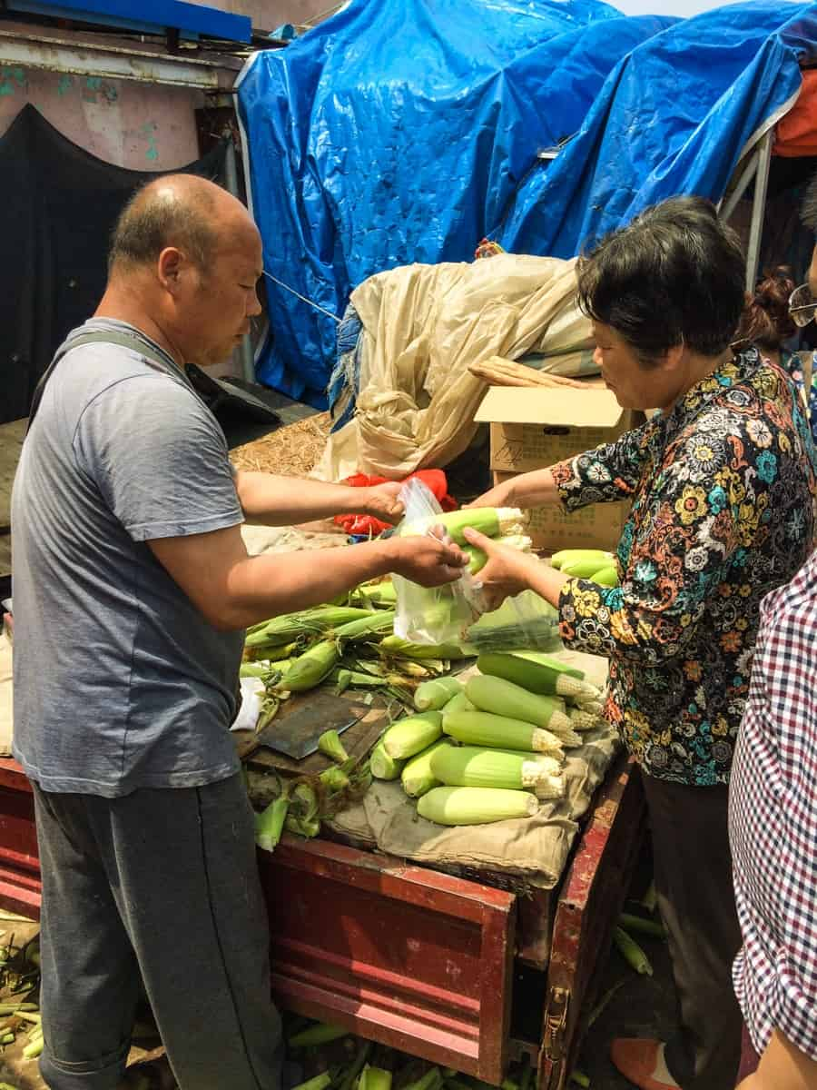 Verkauf Maiskoleben