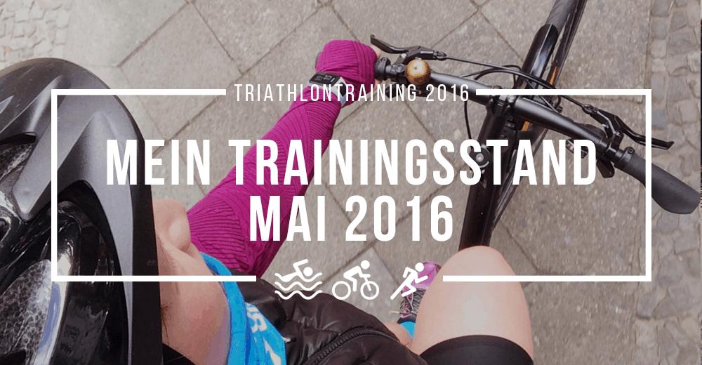 Triathlon-Training 2016: 4 Fragen zum aktuellen Trainingsstand