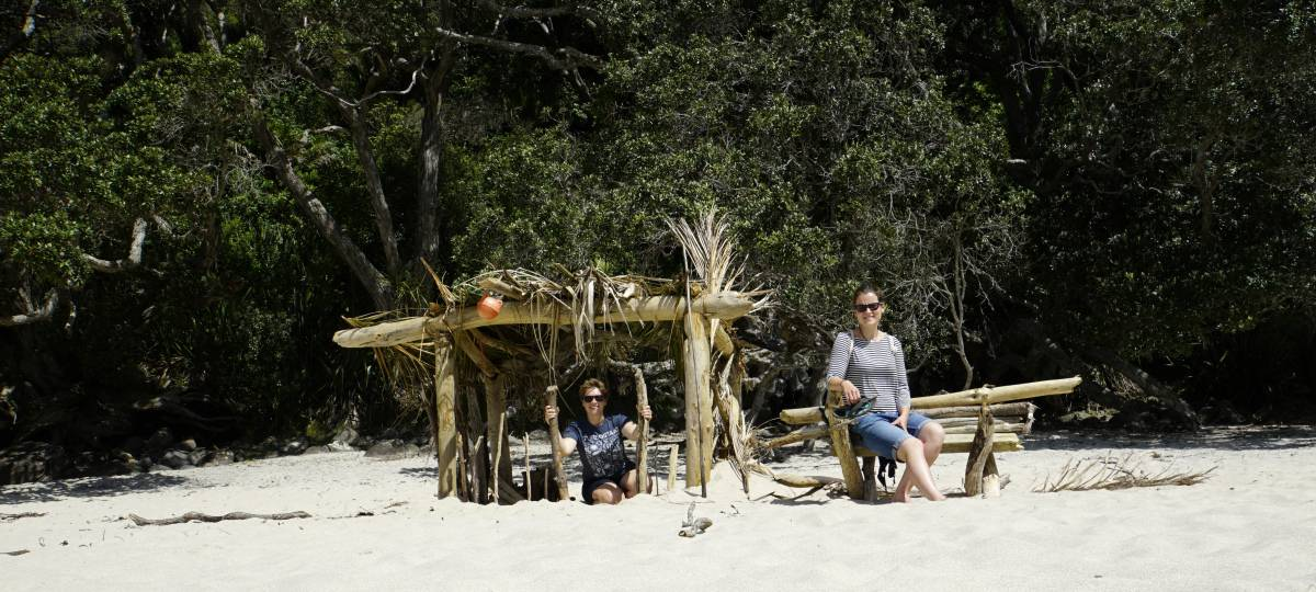 Beach in Coromandel