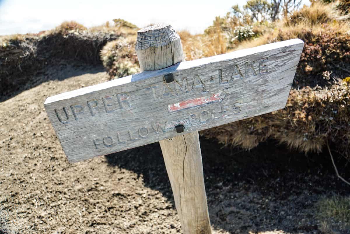 wandern-im-tongariro-nationalpark-33