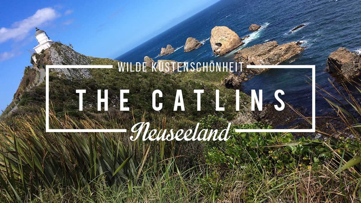 The Catlins In Neuseeland Highlights Sehenswurdigkeiten Reisetipps