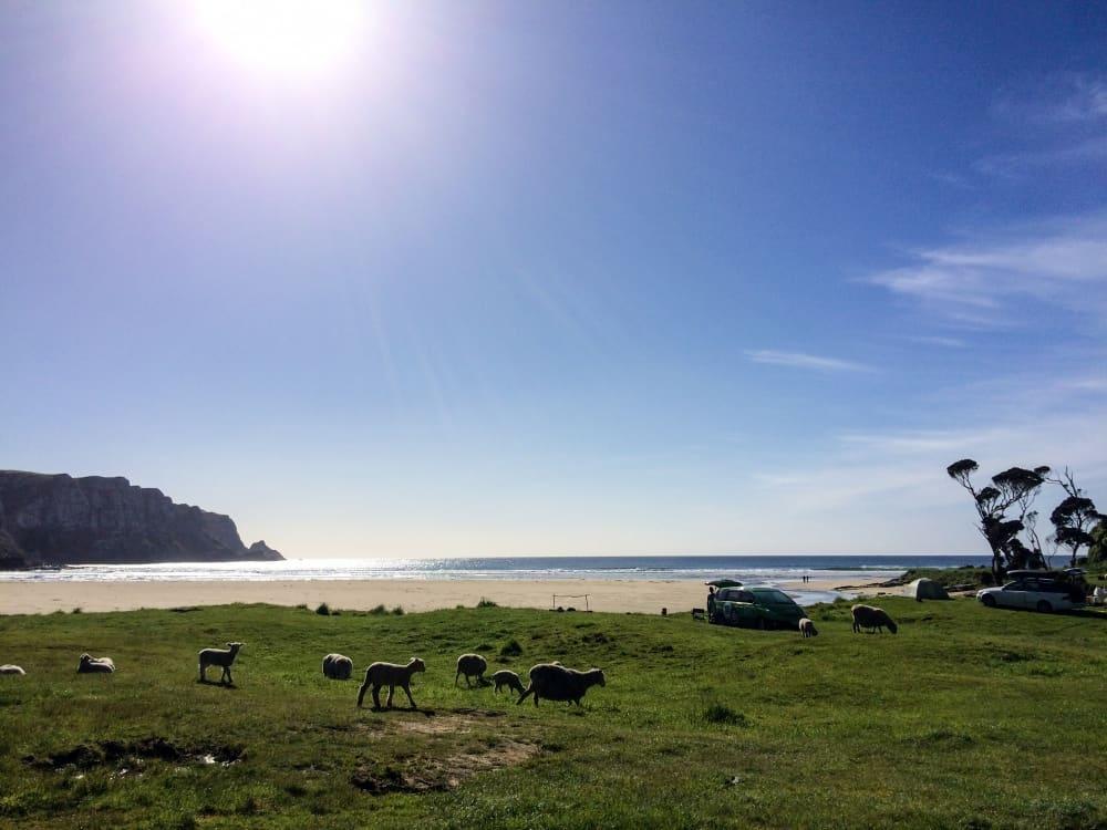 Reisekosten Neuseeland: Unterkünfte & Camping