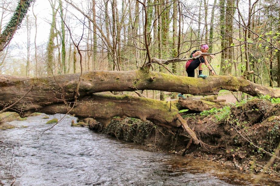Trail Running für Anfänger